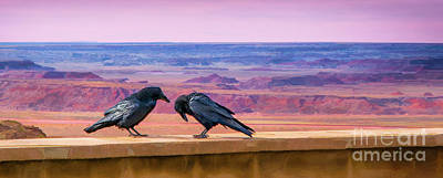 Painted Desert Pals Poster