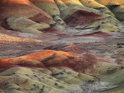 Painted Hills Color And Texture Poster by Leland D Howard
