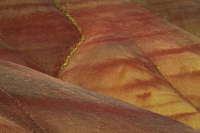 Painted Hills Diagonal Poster by Jean Noren