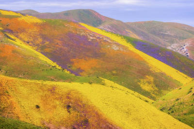 Poster featuring the photograph Painted Hills by Marc Crumpler