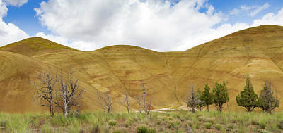 Painted Hills Panorama Poster by Jean Noren