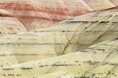 Poster featuring the photograph Painted Hills Ridge by Greg Nyquist