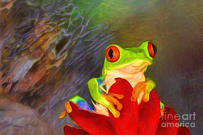 Painted Red Eyed Tree Frog Poster