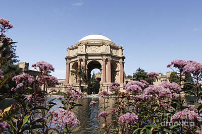 Palace Of Fine Arts Poster by Denise Pohl
