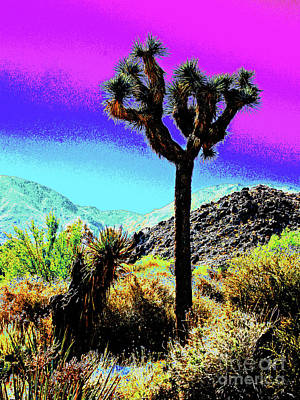 Palm Desert Cactus Poster by Larry Oskin
