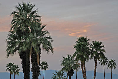 Palm Desert Sunset  Poster
