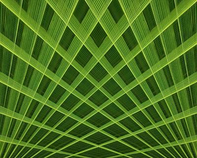 Palm Leaf Composite Poster