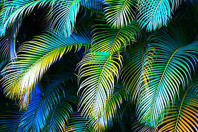 Palm Leaves In Blue Poster by Karon Melillo DeVega