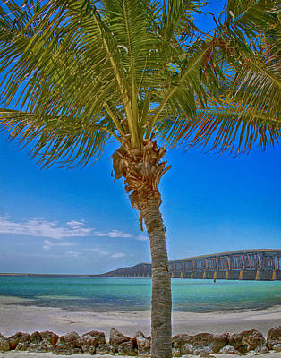 Palm Tree Bridge And Sand Poster by Paula Porterfield-Izzo