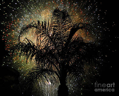 Palm Tree Fireworks Poster