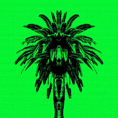 Palm Tree - Green Sky Poster