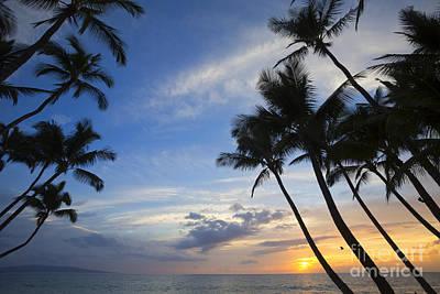 Palm Trees At Sunset, Keawekapu Beach Poster by Ron Dahlquist