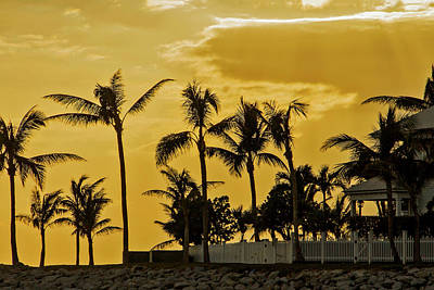 Poster featuring the photograph Palm Trees On Sunset Key At Sunset by Bob Slitzan