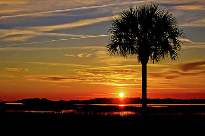 Palmetto Sunset  Poster by Bonnes Eyes Fine Art Photography