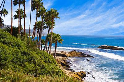 Palms And Seashore California Coast Poster by Utah Images