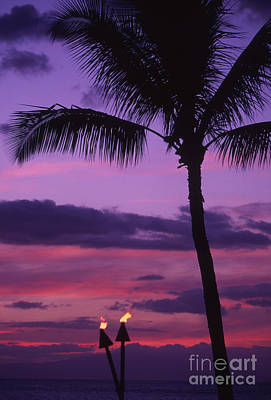 Palms And Tiki Torches Poster by Ron Dahlquist - Printscapes