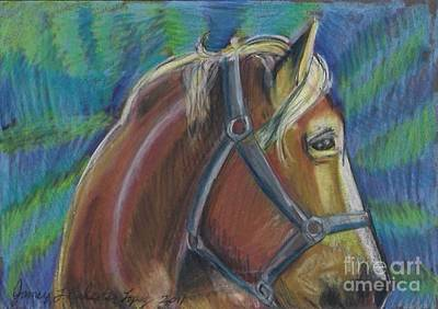 Palomino  Drawing Poster by Jamey Balester