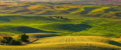 Palouse 2 Poster by Thomas Hall