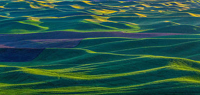 Palouse 4 Poster by Thomas Hall