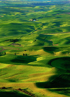 Palouse Morning Poster by Mike  Dawson