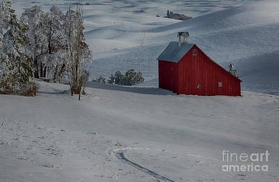Palouse Saltbox Barn Winter Poster