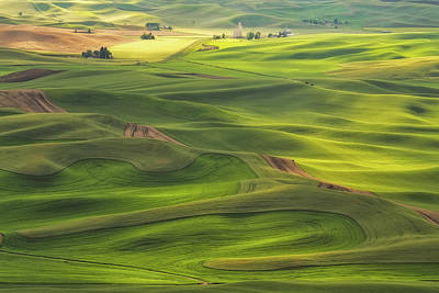 Palouse Views Poster