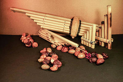 Pan Pipes And Buckeye Seeds Poster
