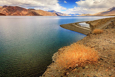 Poster featuring the photograph Pangong Tso Lake by Alexey Stiop