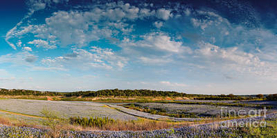 Panorama Of Muleshoe Bend Recreational Area Bluebonnets - Spicewood Lake Travis Texas Hill Country Poster by Silvio Ligutti