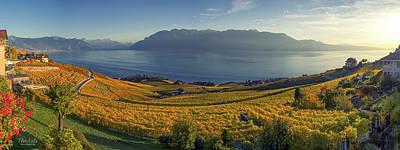 Panorama On Lavaux Region, Vaud, Switzerland Poster