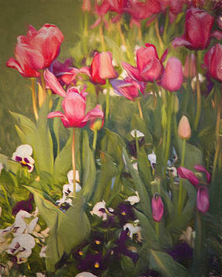 Poster featuring the photograph Pansies And Tulips by Lana Trussell