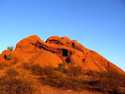 Poster featuring the photograph Papago Park 2 by Michelle Dallocchio