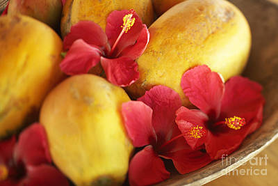 Papaya Fruit And Hibiscus Poster