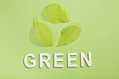 Paper Cut Out Of Green With Leaves Poster