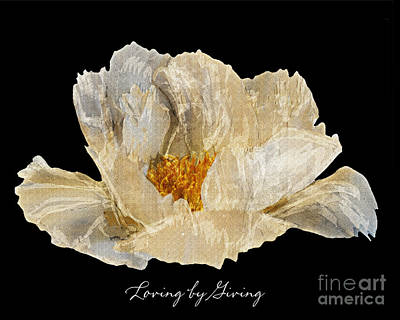Poster featuring the photograph Paper Peony Loving By Giving by Diane E Berry