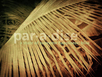 Paradise Defined Poster
