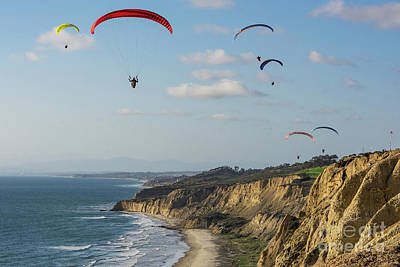 Paragliders At Torrey Pines Gliderport Over Black's Beach Poster
