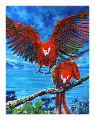 Parrots In Costa Rica Poster