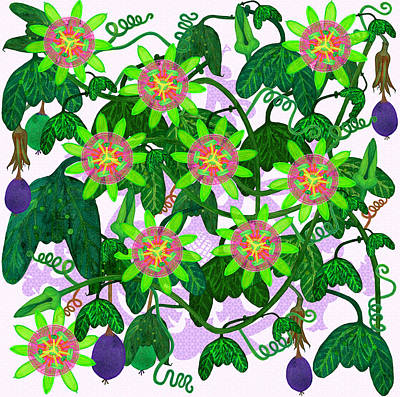 Passiflora Mexicana Poster