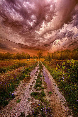 Passion Within Chaos Poster by Phil Koch
