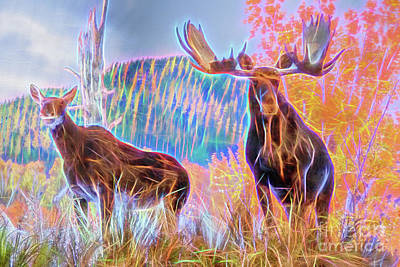 Poster featuring the photograph Pastel Moose Couple by Ray Shiu