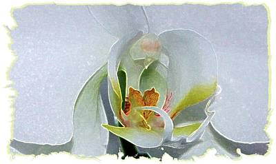 Poster featuring the digital art Pastel Orchid by Ellen Barron O'Reilly