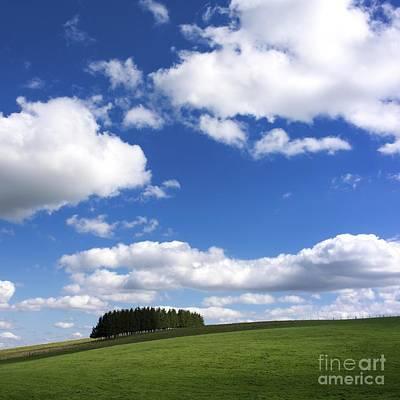 Pasture In Auvergne Poster by Bernard Jaubert
