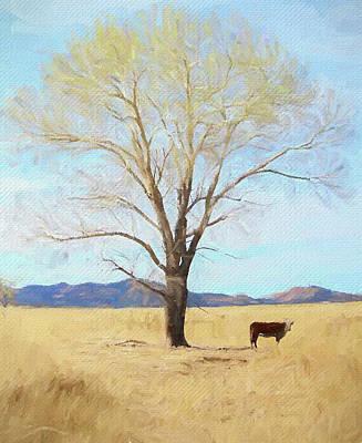 Patagonia Pasture 2 Poster