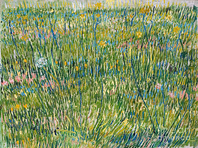 Patch Of Grass Poster by Van Gogh