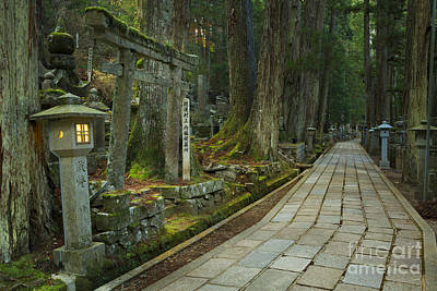 Path Through Koyasan Okunoin Cemetery, Japan Poster