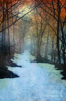 Path Through The Woods In Winter At Sunset Poster