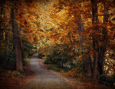 Path To Autumn  Poster by Jessica Jenney