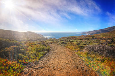 Path To South Rodeo Beach - Marin County California #1 Poster by Jennifer Rondinelli Reilly - Fine Art Photography