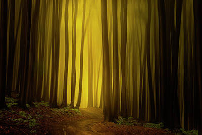 Path To The Source Poster by Janek Sedlar